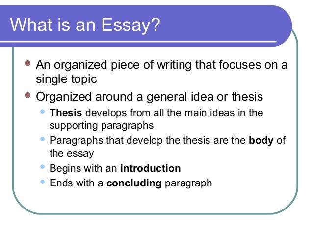 Custom essays editor service online