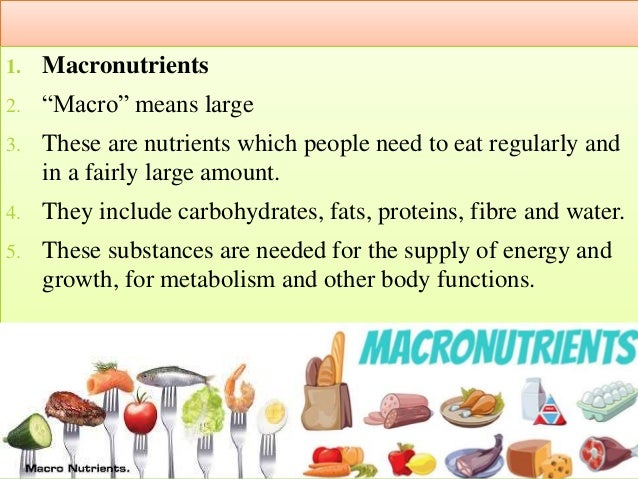 Elements Of Nutrition Macro Amp Micro Nutrients