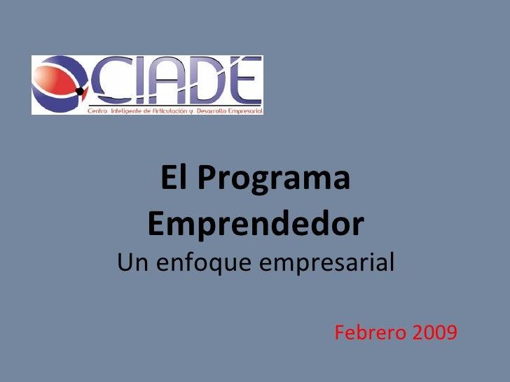 El Programa Emprendedor Un enfoque empresarial Febrero 2009
