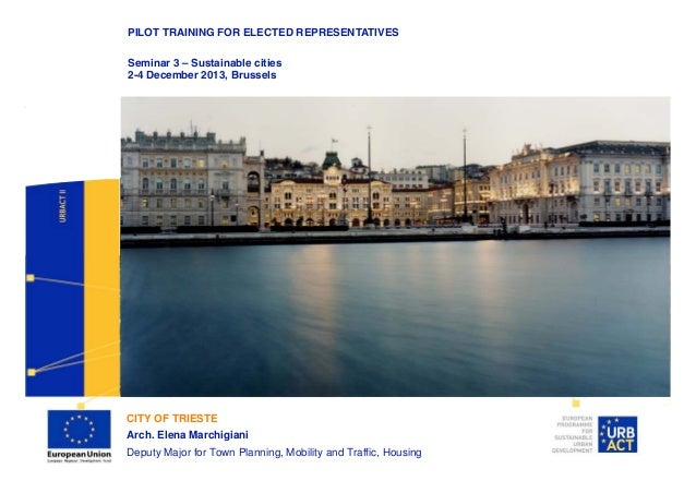 PILOT TRAINING FOR ELECTED REPRESENTATIVES Seminar 3 – Sustainable cities 2-4 December 2013, Brussels Lead Partner  Projec...