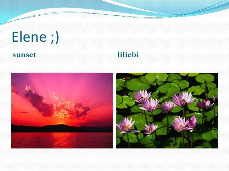 Elene ;)<br />sunset<br />liliebi<br />