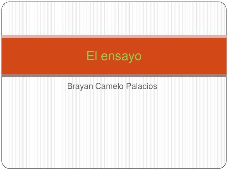 Brayan Camelo Palacios<br />El ensayo<br />