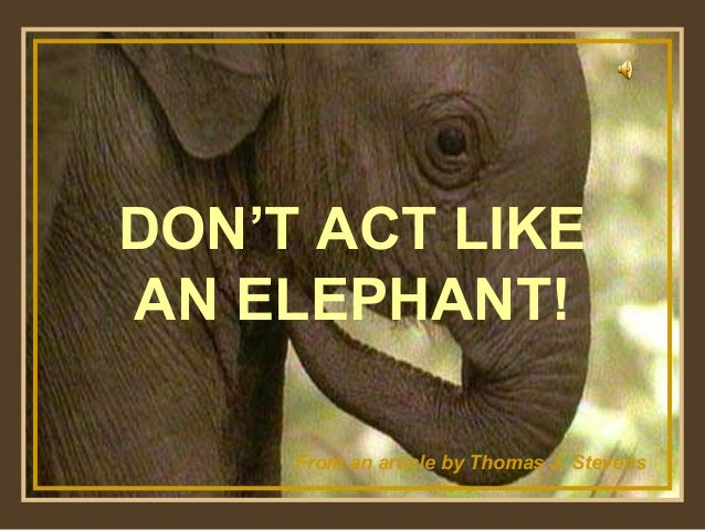 ♫ Turn on your speakers! DON'T ACT LIKE AN ELEPHANT! From an article by Thomas J. Stevens