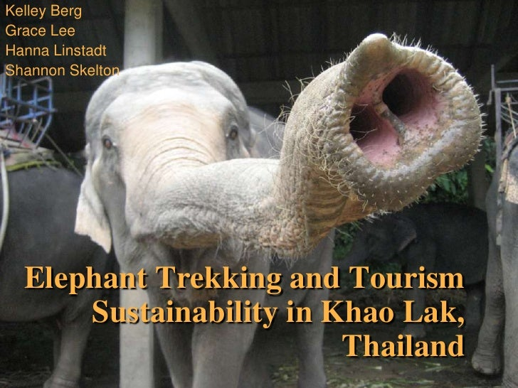 Kelley Berg<br />Grace Lee<br />Hanna Linstadt<br />Shannon Skelton<br />Elephant Trekking and Tourism Sustainability in K...