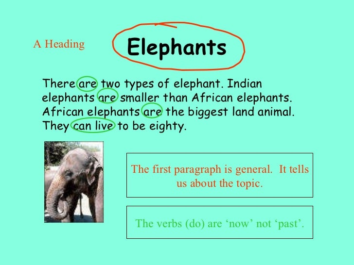 I Hate to Write, Part 2: Eating the Elephant