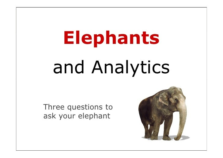 Elephants   and Analytics  Three questions to ask your elephant