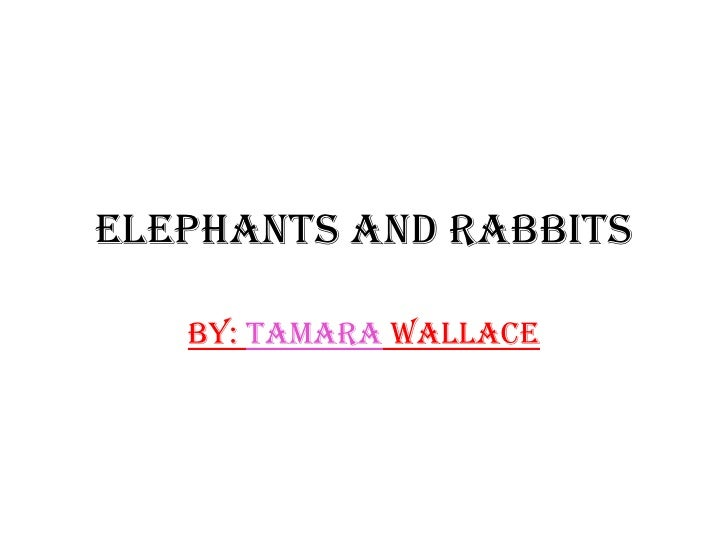 Elephants and Rabbits<br />By: Tamara Wallace<br />