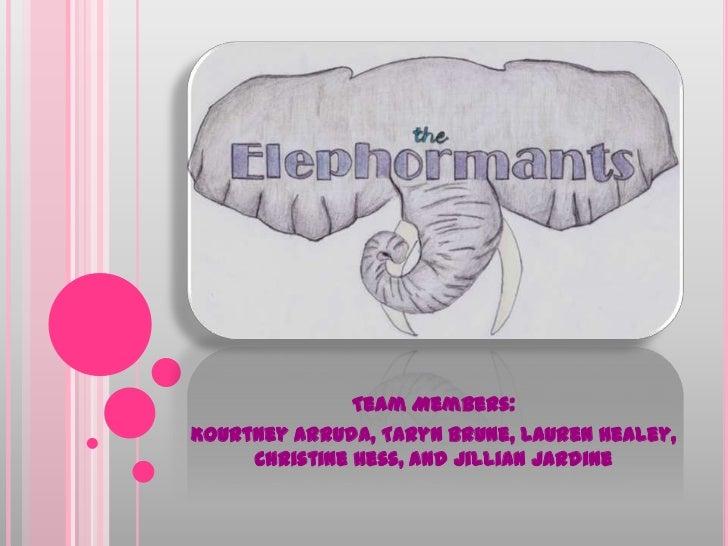 Team Members:<br />Kourtney Arruda, TarynBrune, Lauren Healey, Christine Hess, and Jillian Jardine<br />