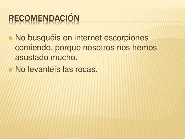 RECOMENDACIÓN  No busquéis en internet escorpiones comiendo, porque nosotros nos hemos asustado mucho.  No levantéis las...