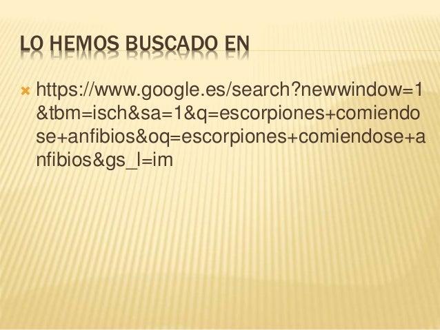 LO HEMOS BUSCADO EN  https://www.google.es/search?newwindow=1 &tbm=isch&sa=1&q=escorpiones+comiendo se+anfibios&oq=escorp...