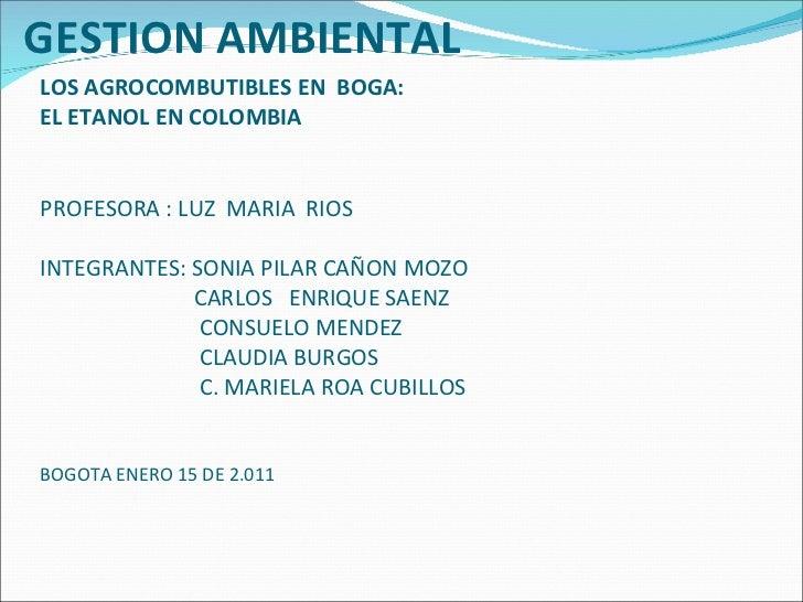 LOS AGROCOMBUTIBLES EN  BOGA:  EL ETANOL EN COLOMBIA PROFESORA : LUZ  MARIA  RIOS INTEGRANTES: SONIA PILAR CAÑON MOZO   CA...