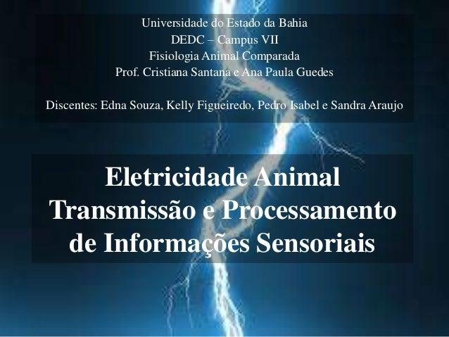 Universidade do Estado da Bahia  DEDC – Campus VII  Fisiologia Animal Comparada  Prof. Cristiana Santana e Ana Paula Guede...