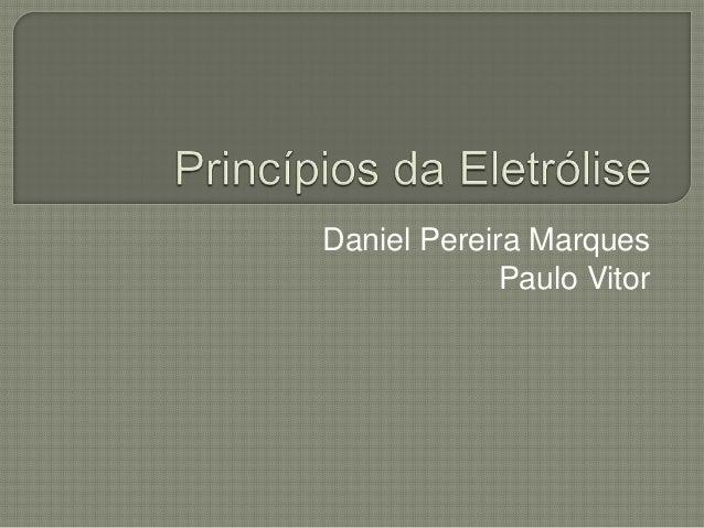 Daniel Pereira Marques Paulo Vitor