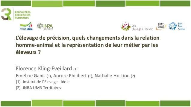 L'élevage de précision, quels changements dans la relation homme-animal et la représentation de leur métier par les éleveu...