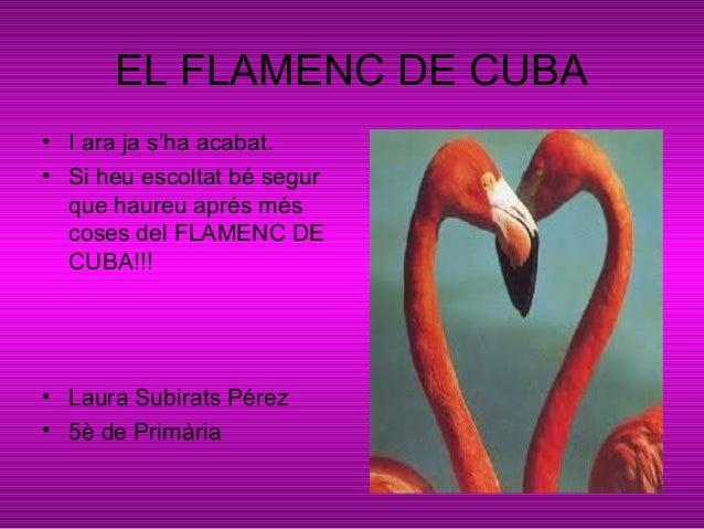 EL FLAMENC DE CUBA• I ara ja s'ha acabat.• Si heu escoltat bé segurque haureu aprés méscoses del FLAMENC DECUBA!!!• Laura ...