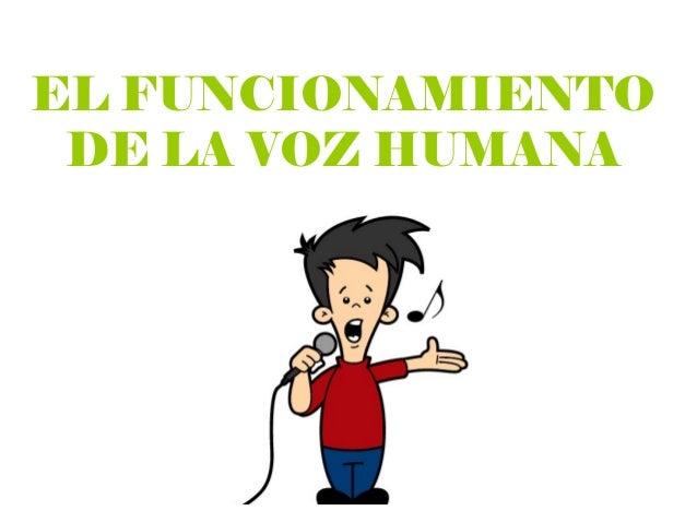 EL FUNCIONAMIENTO DE LA VOZ HUMANA