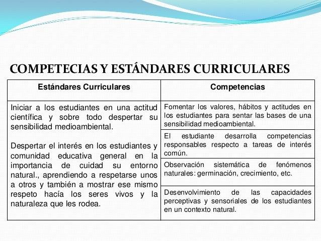 COMPETECIAS Y ESTÁNDARES CURRICULARES       Estándares Curriculares                          CompetenciasIniciar a los est...