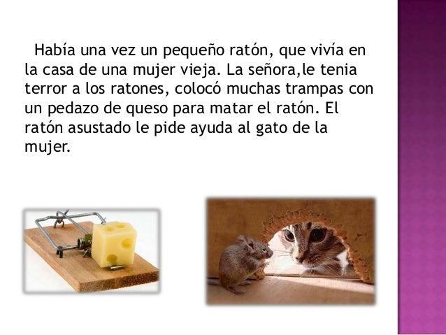 Como matar un raton en casa simple remedios caseros - Como eliminar ratas en casa ...