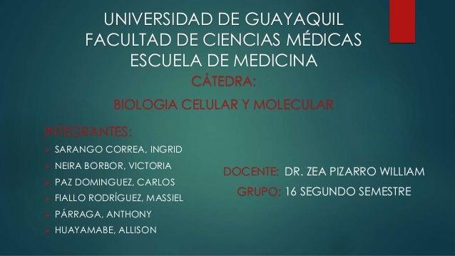 UNIVERSIDAD DE GUAYAQUIL FACULTAD DE CIENCIAS MÉDICAS ESCUELA DE MEDICINA INTEGRANTES:  SARANGO CORREA, INGRID  NEIRA BO...