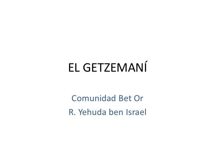 EL GETZEMANÍ Comunidad Bet OrR. Yehuda ben Israel