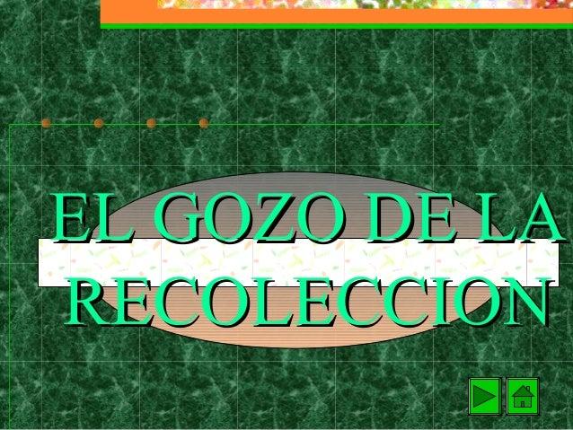 EL GOZO DE LARECOLECCION