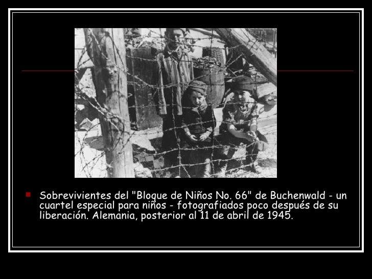 <ul><li>Sobrevivientes del &quot;Bloque de Niños No. 66&quot; de Buchenwald - un cuartel especial para niños - fotografiad...
