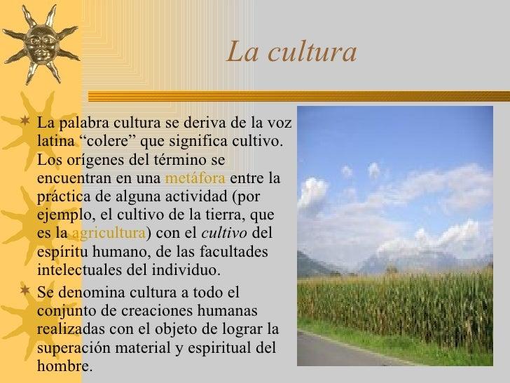 El hombre la cultura la pol tica y la sociedad for Que es la asociacion de cultivos
