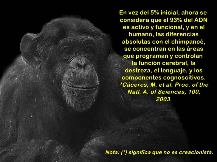 El hombre mono for En 2003 se completo la secuenciacion del humano