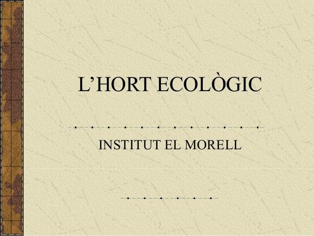 L'HORT ECOLÒGIC INSTITUT EL MORELL