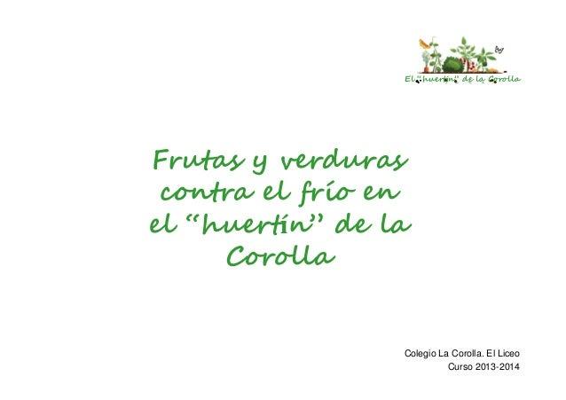 """El """"huertín"""" de la Corolla  Frutas y verduras contra el frío en el """"huertín"""" de la Corolla  Colegio La Corolla. El Liceo C..."""
