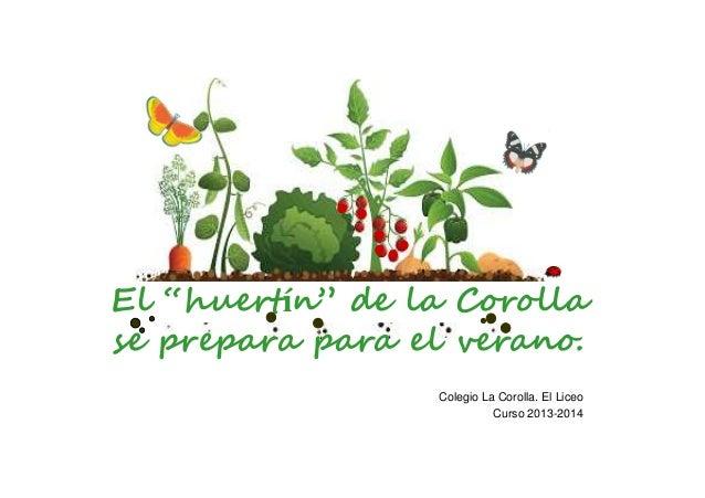"""El """"huertín"""" de la Corolla se prepara para el verano. Colegio La Corolla. El Liceo Curso 2013-2014"""