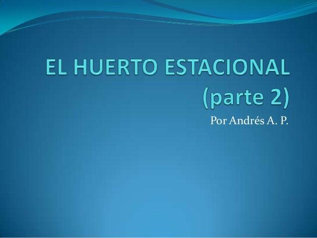 Por Andrés A. P.