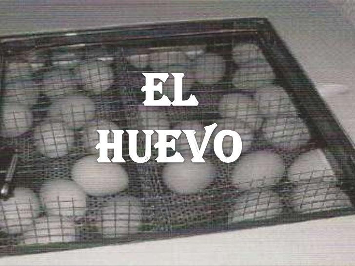 EL HUEVO<br />