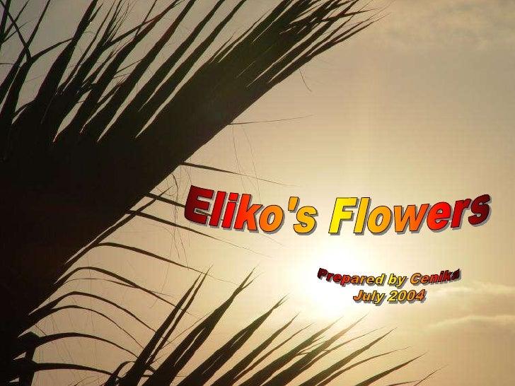 Eliko's Flowers