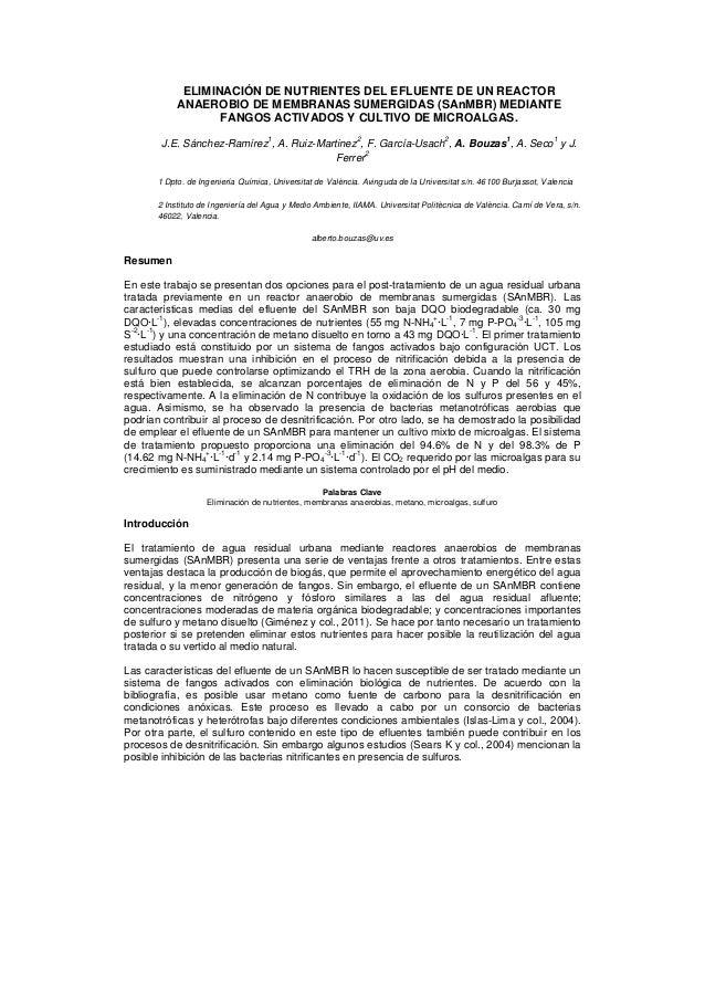 ELIMINACIÓN DE NUTRIENTES DEL EFLUENTE DE UN REACTOR            ANAEROBIO DE MEMBRANAS SUMERGIDAS (SAnMBR) MEDIANTE       ...