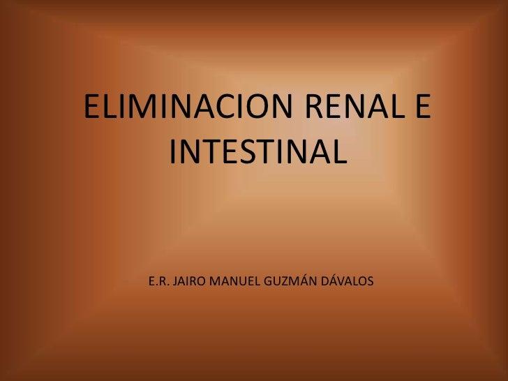 ELIMINACION RENAL E INTESTINAL<br />E.R. JAIRO MANUEL GUZMÁN DÁVALOS<br />