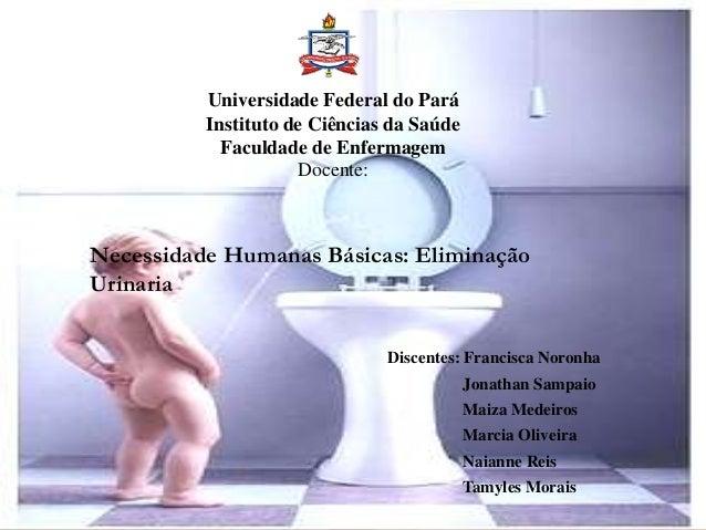 Universidade Federal do Pará Instituto de Ciências da Saúde Faculdade de Enfermagem Docente: Discentes: Francisca Noronha ...
