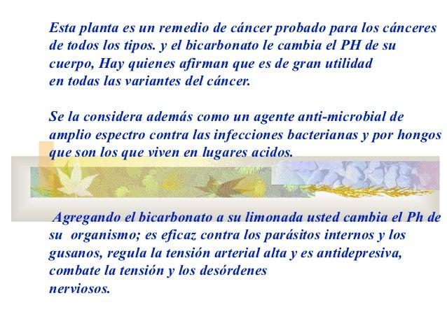 Esta planta es un remedio de cáncer probado para los cánceresde todos los tipos. y el bicarbonato le cambia el PH de sucue...