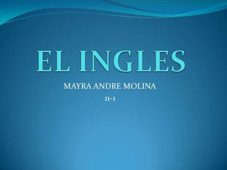 EL INGLES<br />MAYRA ANDRE MOLINA <br />11-1<br />