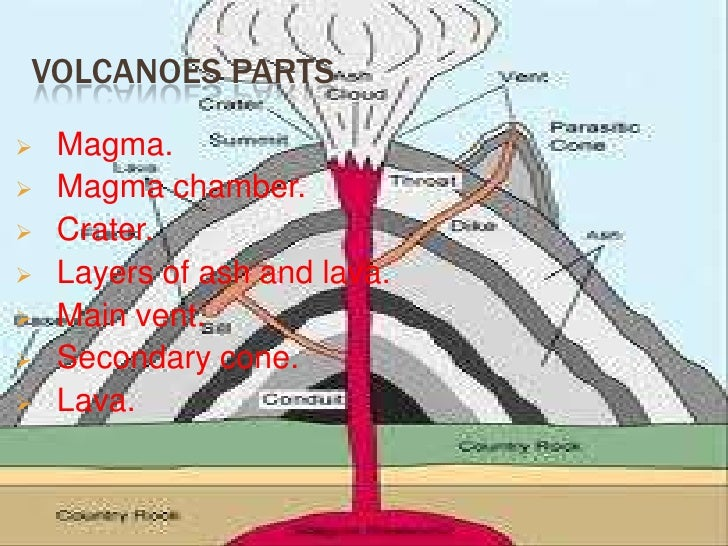 Anatomy Of Volcanoes Gallery Human Body Anatomy