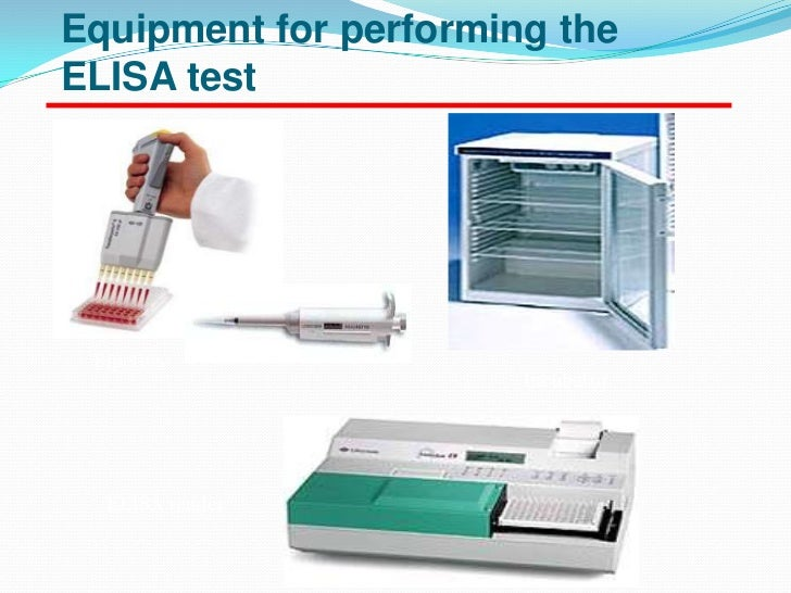 elisa testing essay Enzyme-linked immunosorbent assay (abbreviated as elisa), is a kind of  immunoassay technique to detect the presence of a specific.