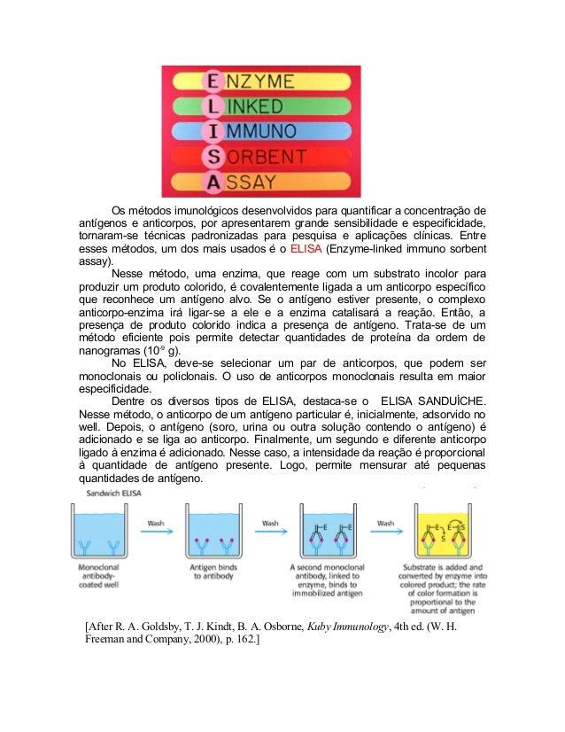 Os métodos imunológicos desenvolvidos para quantificar a concentração de antígenos e anticorpos, por apresentarem grande s...