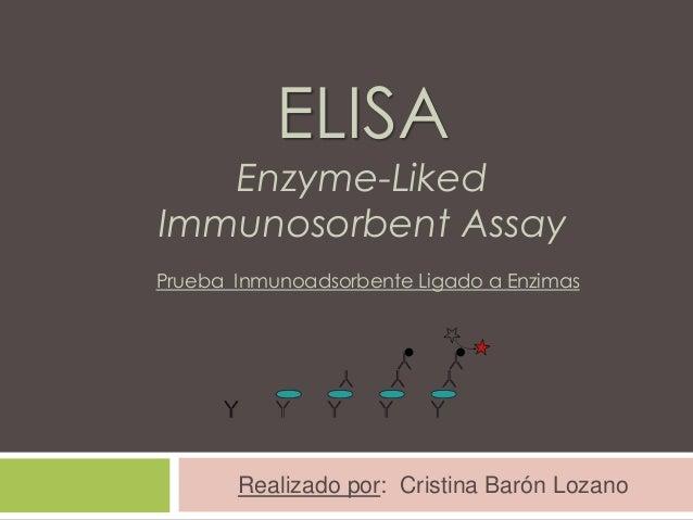 ELISA  Enzyme-Liked Immunosorbent Assay Prueba Inmunoadsorbente Ligado a Enzimas  Realizado por: Cristina Barón Lozano
