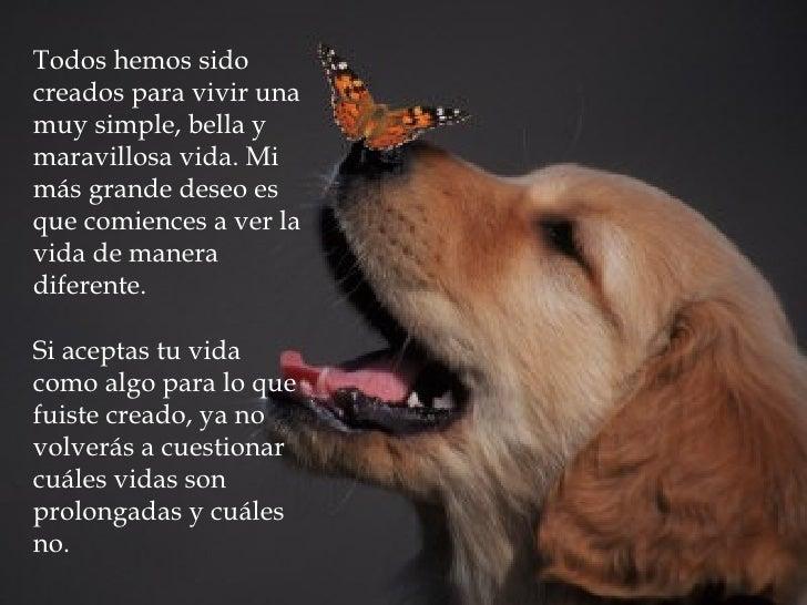 Todos hemos sido creados para vivir una muy simple, bella y maravillosa vida. Mi más grande deseo es que comiences a ver l...