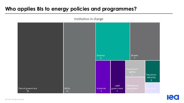 IEA 2020. All rights reserved. Who applies BIs to energy policies and programmes?