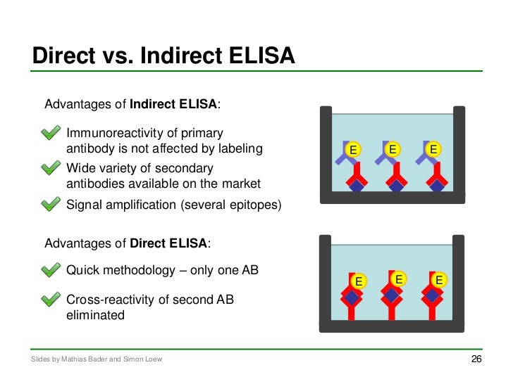 enzyme linked immunosorbent assay elisa Elisa is a fantastically versatile tool that is used for diagnosing viral infections and the like, but technically speaking, it can be used to detect and.