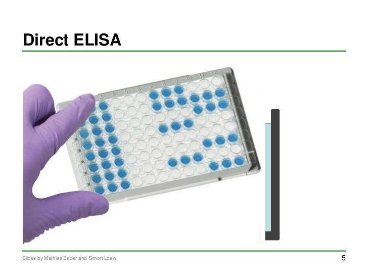 enzyme linked immunosorbent assay elisa practical Enzyme-linked immunosorbent assay (elisa): a practical tool for diagnosis of viruses and other infectious agents.