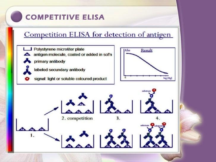 Elisa seminar final2