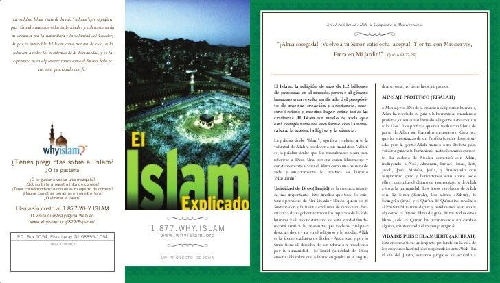 """La palabra Islam viene de la raíz """"salaam"""" que significa                                                                  ..."""
