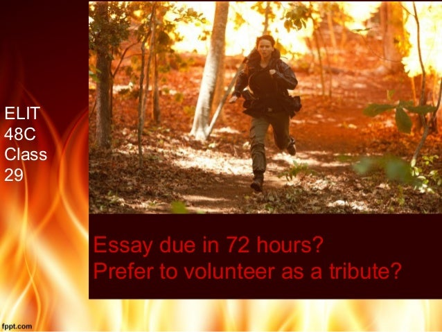 Essay due in 72 hours? Prefer to volunteer as a tribute? ELIT 48C Class 29